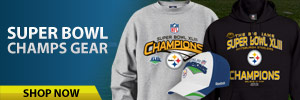 300x100_Steelers_shop now picture